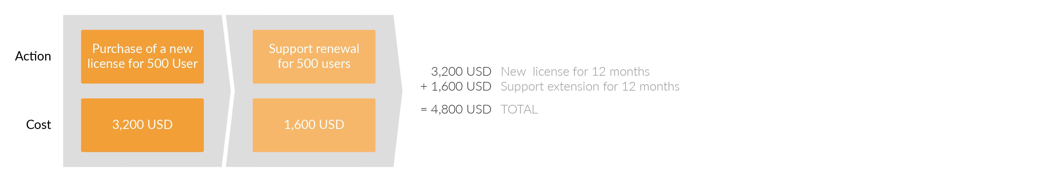 在第一年年底,您需要续签支持。 续订价格是新许可价格的一半。